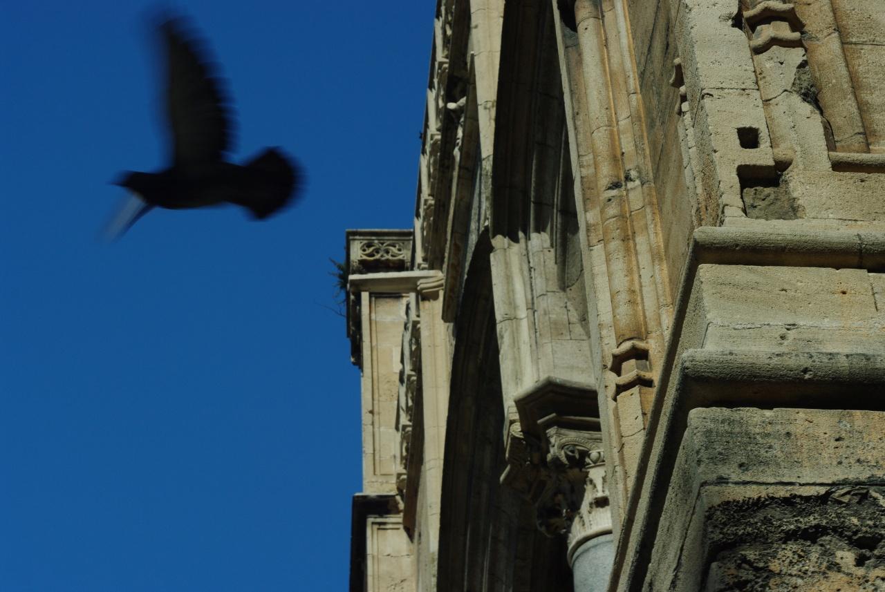 copyright Enrico Minafra - www.enricominafra.it