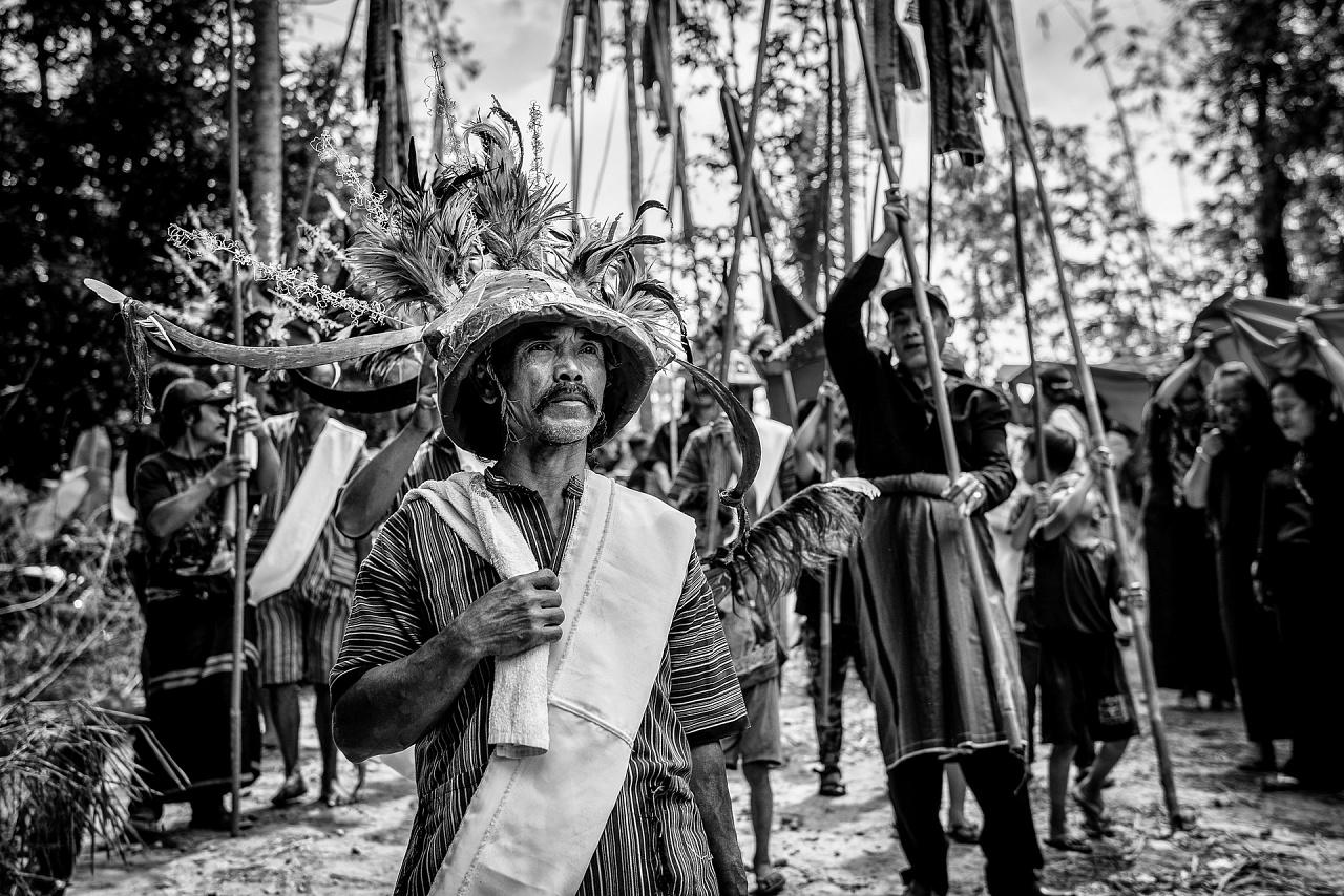 In The Toraja Kingdom